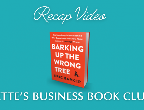 Barking Up The Wrong Tree – Video