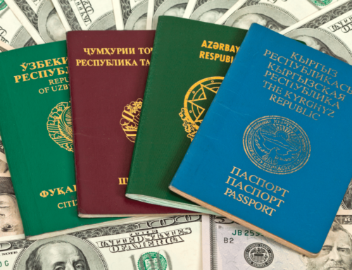 Foreign Tax Issues for US Citizens Video